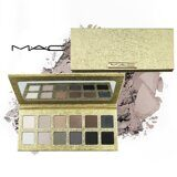 Тени Palette 10 in 1 Gold